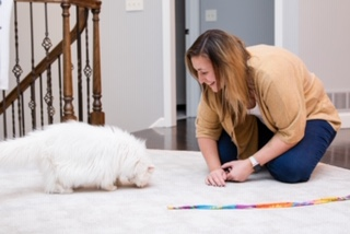 Prior Lake, MN pet sitter